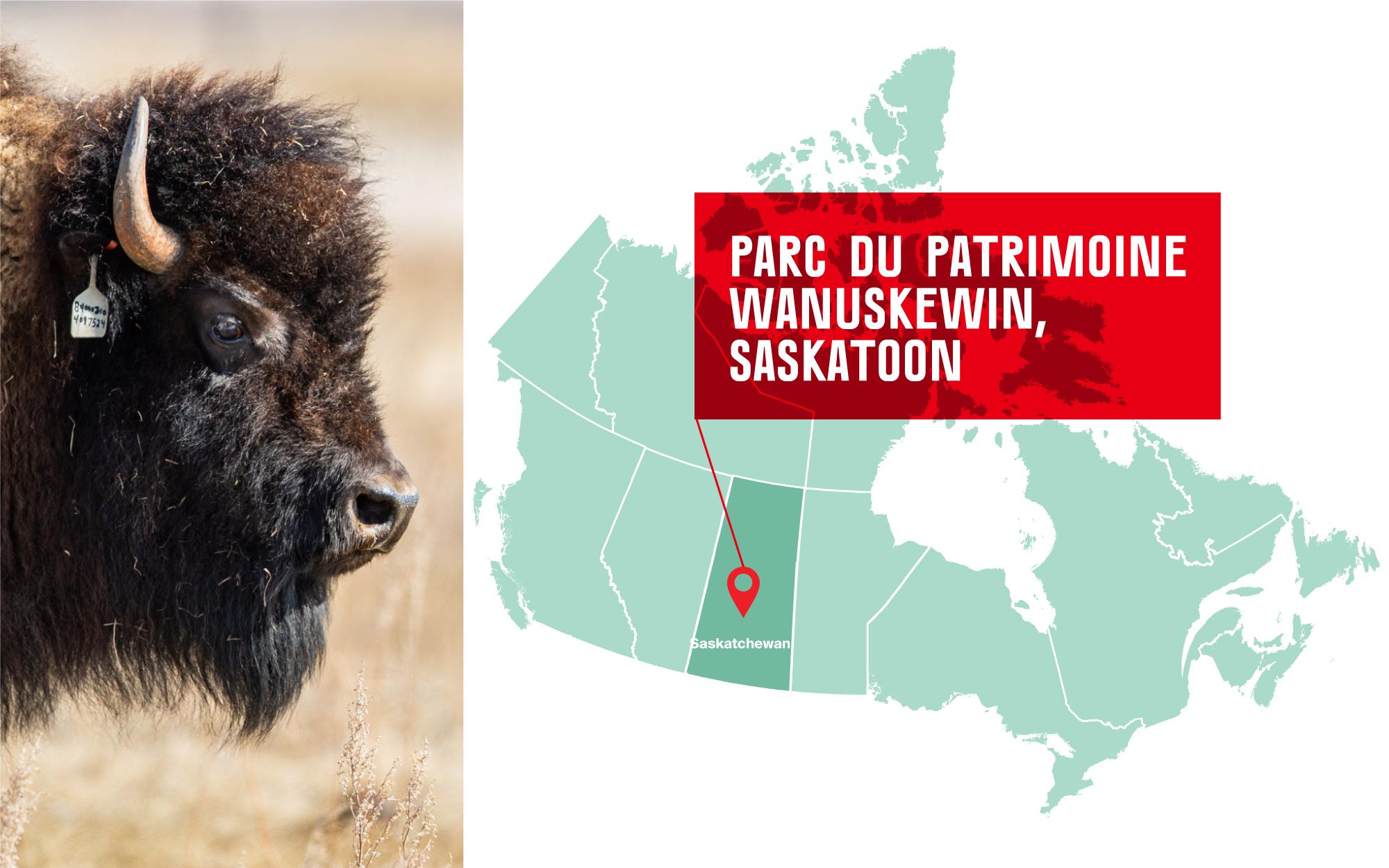 Parc du patrimoine Wanuskewin in Saskatoon