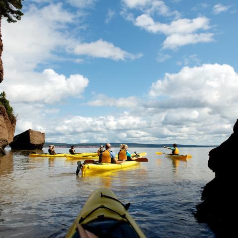 Kayak the Hopewell Rocks