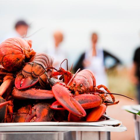 Lobster - Credit: Tourism PEI/Stephen Harris