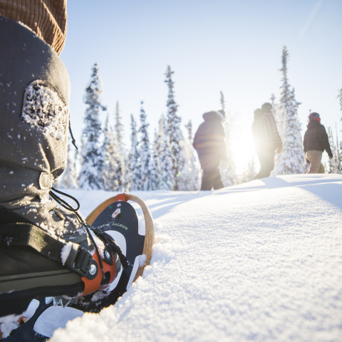 12 Cool Ways to Make Tracks in the Northwest Territories in Winter