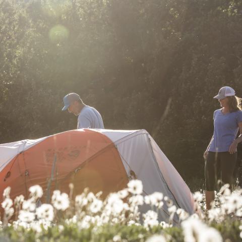 Camping in Yukon