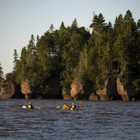 Bay of Fundy - Vacations of the Brave