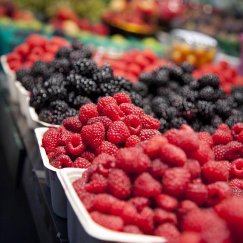 British Columbia berries