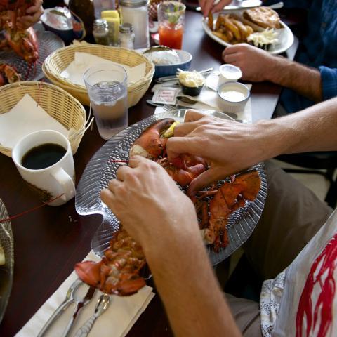 Lobster New Brunswick Food