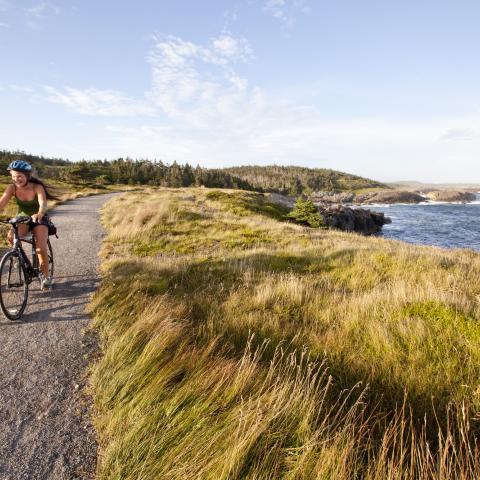 Cabot Trail Bike Tour - Freewheeling Adventures
