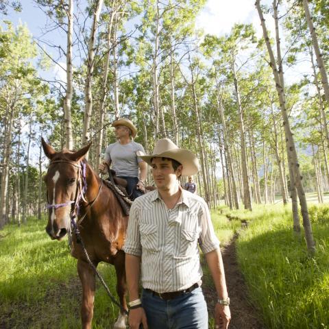 Vivez l'Alberta du cowboy