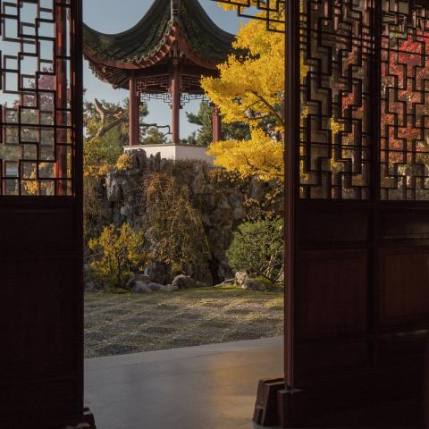 Dr. Sun Yat-Sen Classical Chinese Garden in the Autumn