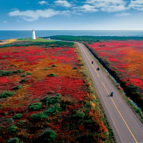 Your Guide to Fall Colours in New Brunswick