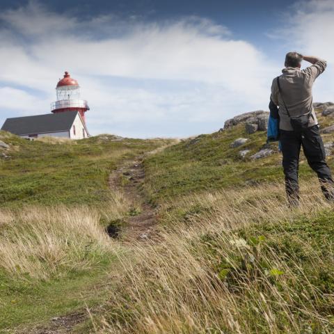 Die besten Fotospots in Neufundland