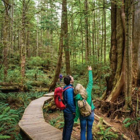 Photo of a couple hiking in Tofino