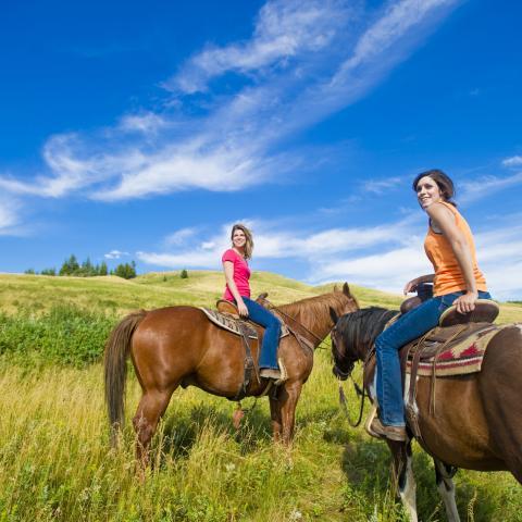 Historic Reesor Ranch`