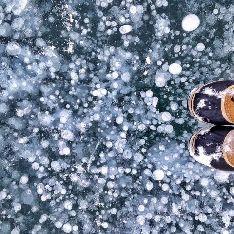 Ice Bubbles, Abraham Lake, Alberta