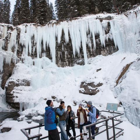 Johnston Canyon Icewalk