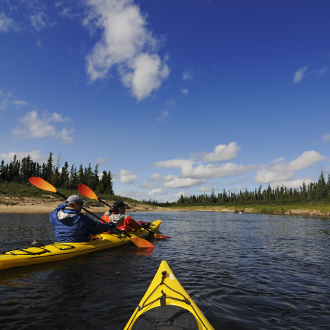 Lazy Bear Expeditions, Churchill, Manitoba - credit: Norbert Eisele-Hein
