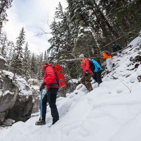 12 of the Best Winter Hikes and Snowshoe Trips in Alberta