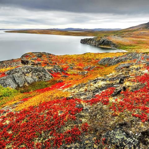 The Northwest Passage