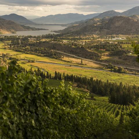 10 Must-Try Outdoor Adventures in BC's Okanagan
