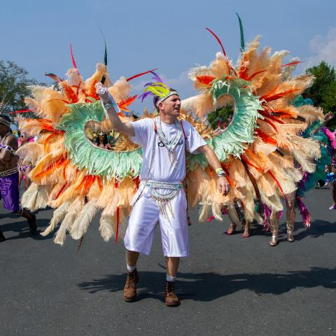 Vacations of the Brave - Ontario's Caribana Festival