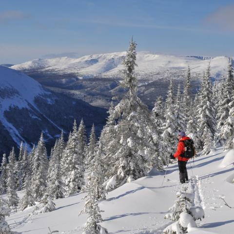 Cross-country skiing at Gaspesie National Park