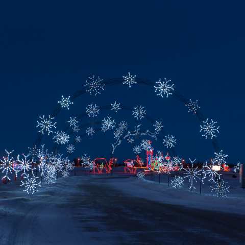 9 Reasons to Love Winter in Manitoba