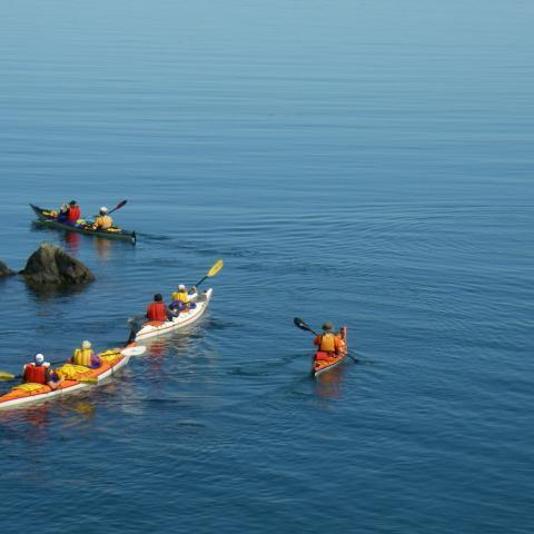 Sea Kayaking Tours New Brunswick