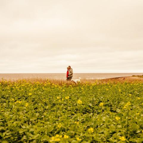 people walking near the ocean in Prince Edward Island