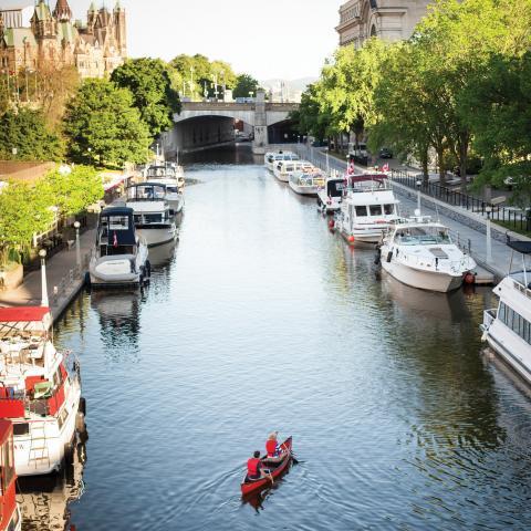 Best water sports in Canada