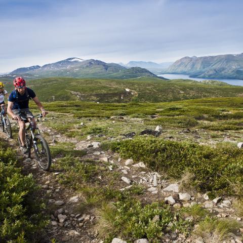 Mountain biking in Yukon Territory