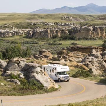 Alberta Road Trips