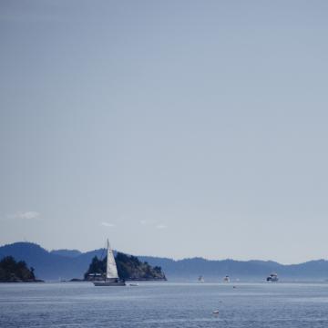 Cinq excursions d'une journée sur l'île de Vancouver au départ de Victoria
