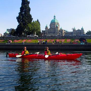 Kayaking Victoria's Inner Harbour with Kelp Reef Adventures