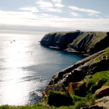 La route aux accents irlandais du circuit Irish Loop à Terre-Neuve-et-Labrador